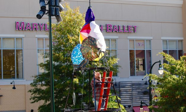Positivi-Tree to light up downtown Silver Spring this weekend