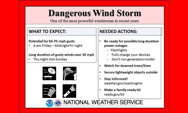 Dangerous Wind Storm Whips Silver Spring