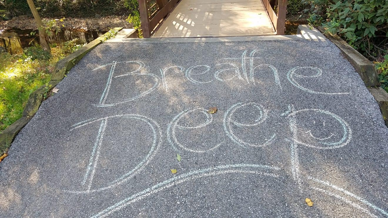 Unknown Artist's Work Brightens Trail Users Day