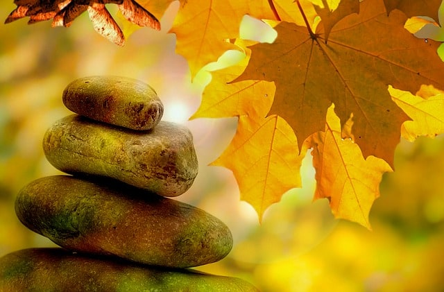 Holiday Stress Relief:  Yoga Nidra Meditation