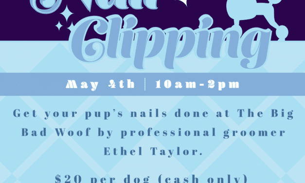 Dog Nail Clipping by Professional Groomer Ethel Taylor