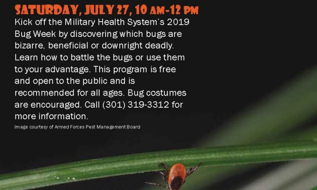 Bugapalooza at the Medical Museum