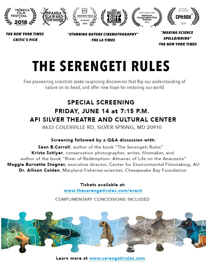 The Serengeti Rules - Film Screening and Panel Discussion