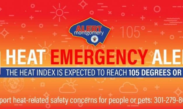 County Issues Emergency Heat Alert for People, Pets